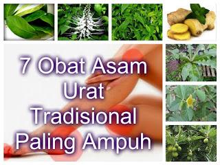 Obat Asam Urat Tradisional Paling Ampuh 7 Obat Asam Urat Tradisional Paling Ampuh