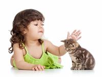 Alergi merupakan gangguan kepekaan atau reaksi yang berlebihan dari tubuh terhadap benda Cara Tradisional Atasi Alergi
