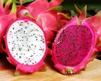 Kandungan dan manfaat buah naga untuk kesehatan  Kandungan dan manfaat buah naga untuk kesehatan