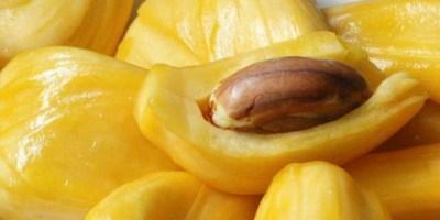 Manfaat dan efek samping buah nangka untuk kesehatan Manfaat dan Efek Samping Buah Nangka bagi Kesehatan